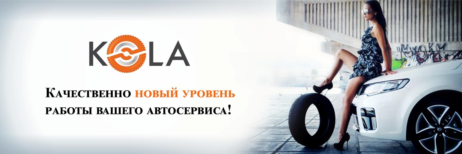программа для автосервиса руководство по ремонту автомобилей